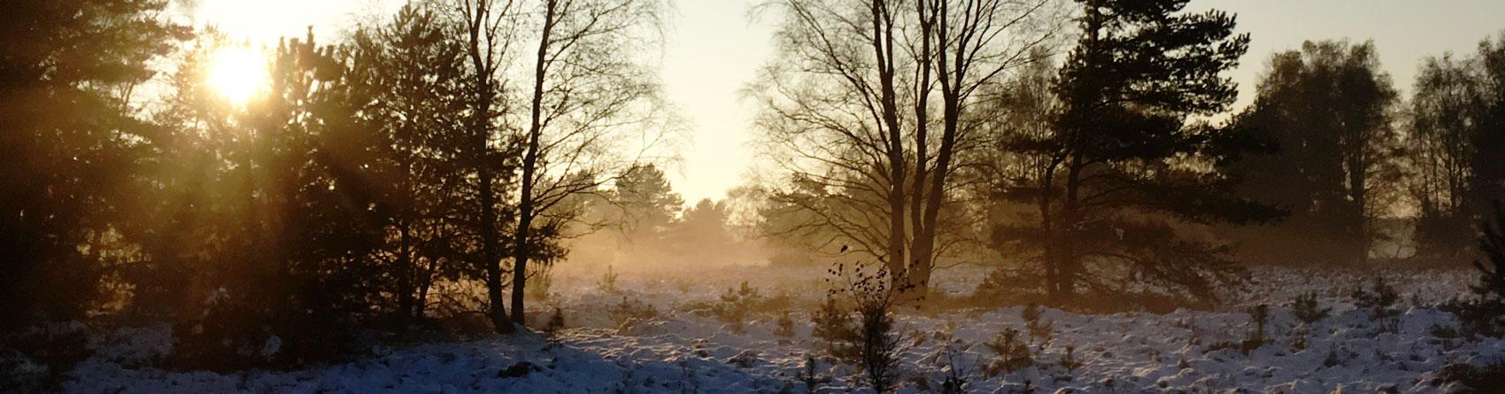 handeloh-titelbild-winter